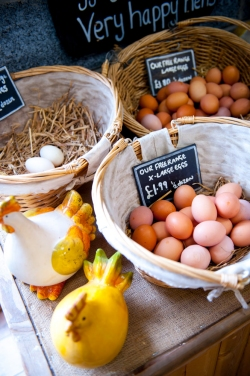 Free Range Eggs at Muddy Boots